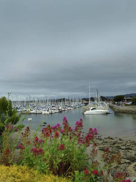 Monterey Bay Photograph - Monterey Harbor  by Gordon Beck