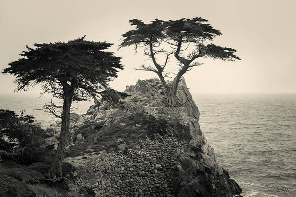Photograph - Monterey Peninsula II Toned by David Gordon