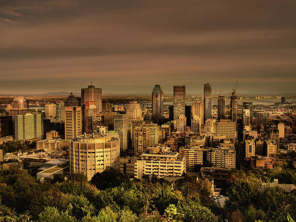 Photograph - Montreal Golden Hour by Juan Contreras
