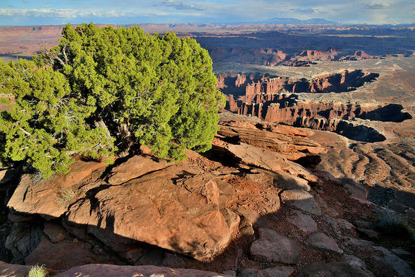 Photograph - Monument Basin From Grand View Point by Ray Mathis