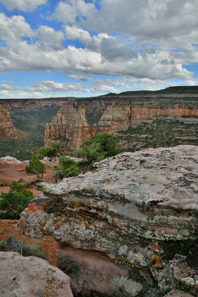 Photograph - Monument Canyon From Rim Trail In Colorado Nm by Ray Mathis