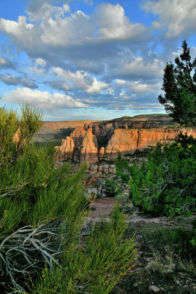 Photograph - Monument Canyon From Saddlehorn Mesa by Ray Mathis