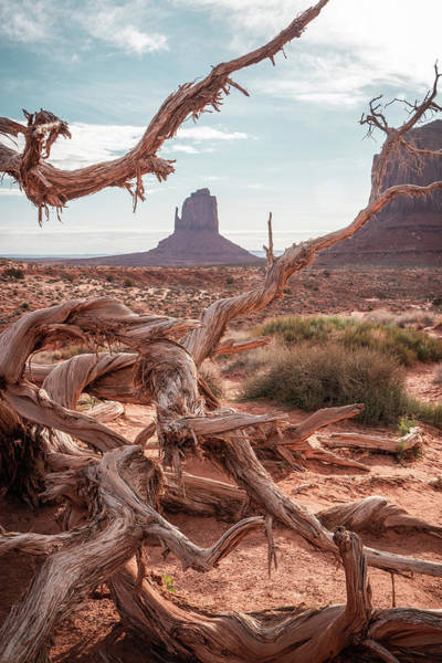 Photograph - Monument Valley II by Dalibor Hanzal