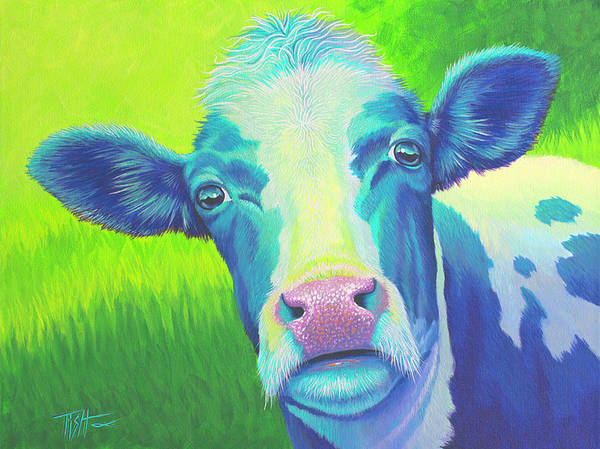 Moo Now Blue Cow Art Print