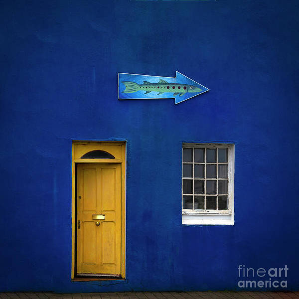 Wall Art - Photograph - Mood Indigo by Evelina Kremsdorf