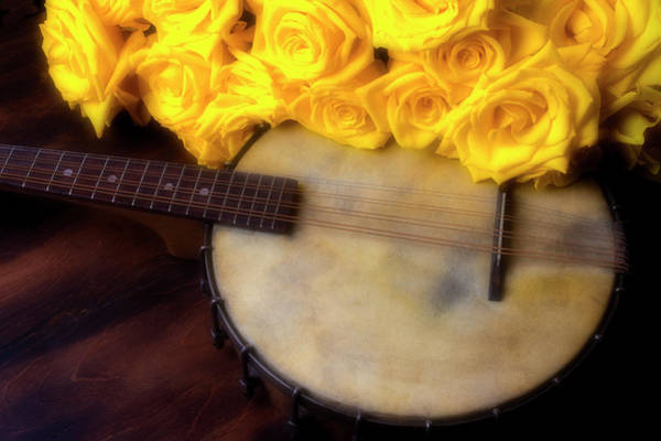 Wall Art - Photograph - Moody Banjo And Yellow Roses by Garry Gay