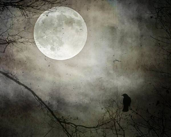Wall Art - Photograph - Moody Moon Glow  by Gothicrow Images