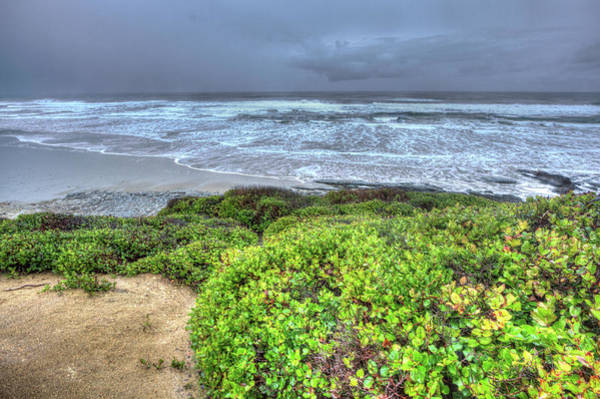 Camera Raw Photograph - Moolach Beach Oregon by Brenton Cooper