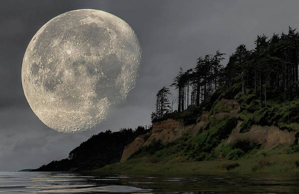 Photograph - Moon And Beach by Bob Cournoyer