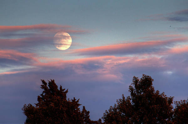 Topeka Wall Art - Photograph - Moon In Clouds Over Trees by David Dehetre