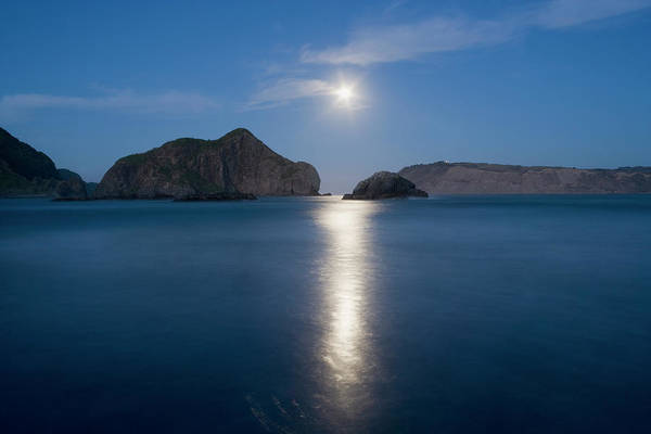 Headlands Photograph - Moon Light Reflected In Manukau by Robin Bush