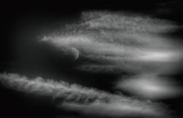 Photograph - Moon Mist by Cate Franklyn