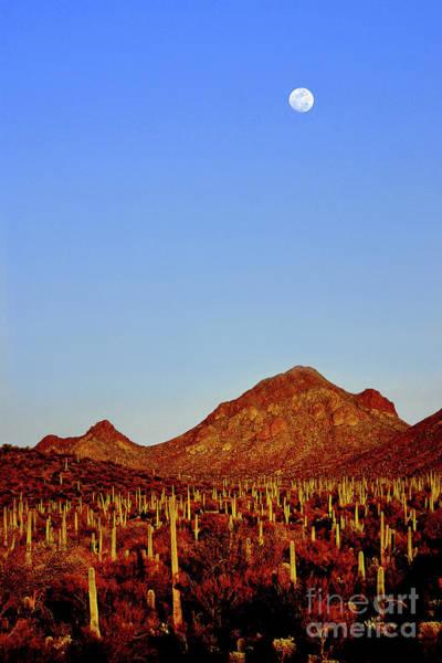 Wall Art - Photograph - Moon Over Bren Mountain by Douglas Taylor