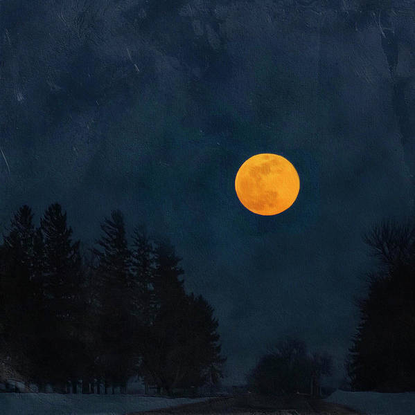 Photograph - Moon Over Heron Lake by Caroline Jensen