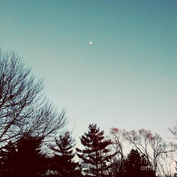 Photograph - Moon Over The Golden Hour by Frank J Casella