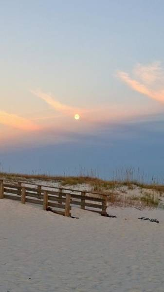 Wall Art - Photograph - Moon Rise by Gayle Miller