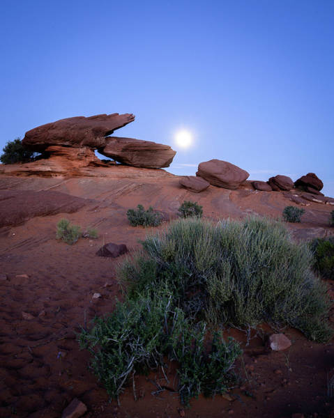 Photograph - Moon Set by Laura Hedien