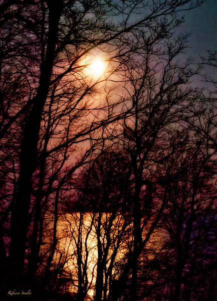 Photograph - Moon Setting On Winter by Rebecca Samler