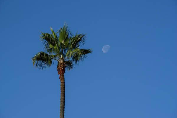 Photograph - Moonfall At La Jolla by Jonathan Hansen