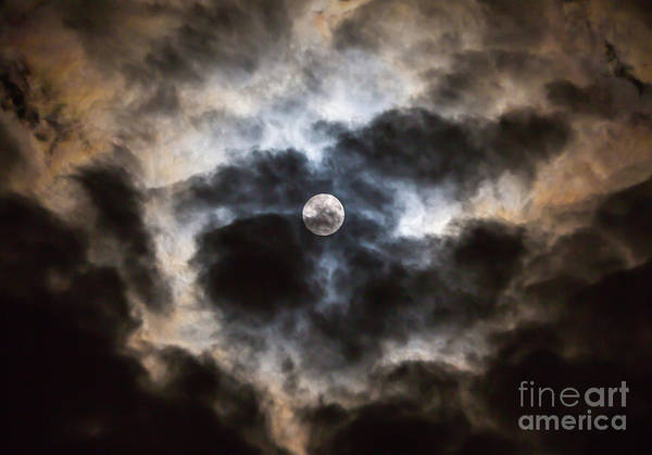 Photograph - Moonglow 1 by Kevin McCarthy