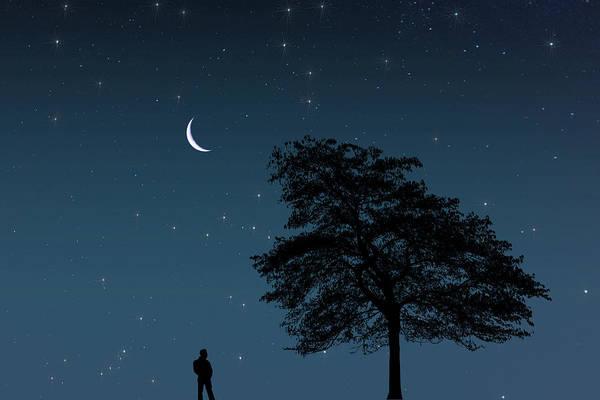 Digital Art - Moonlight Contemplation by Steve Purnell