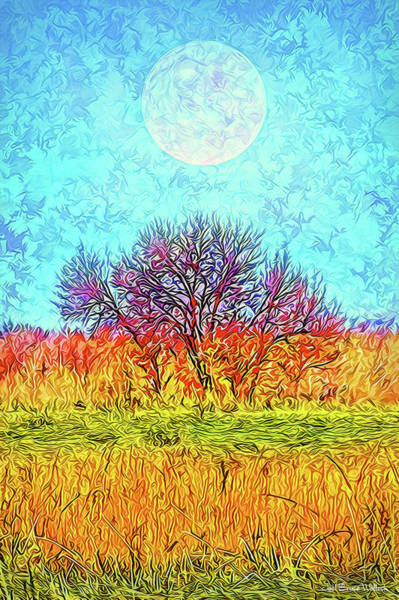 Digital Art - Moonlight Over Fields Of Gold - Boulder County Colorado by Joel Bruce Wallach