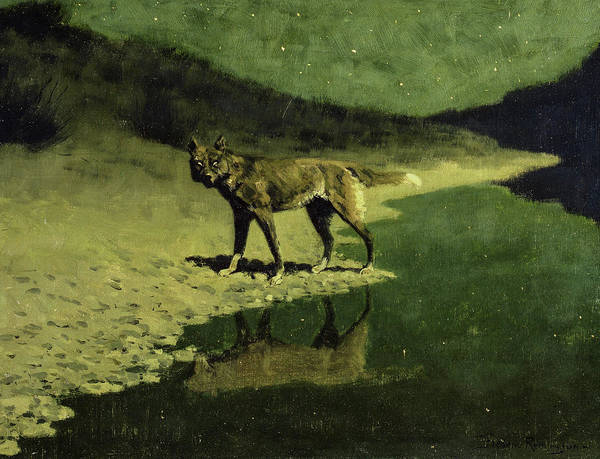 Wall Art - Painting - Moonlight, Wolf, 1904 by Frederic Remington