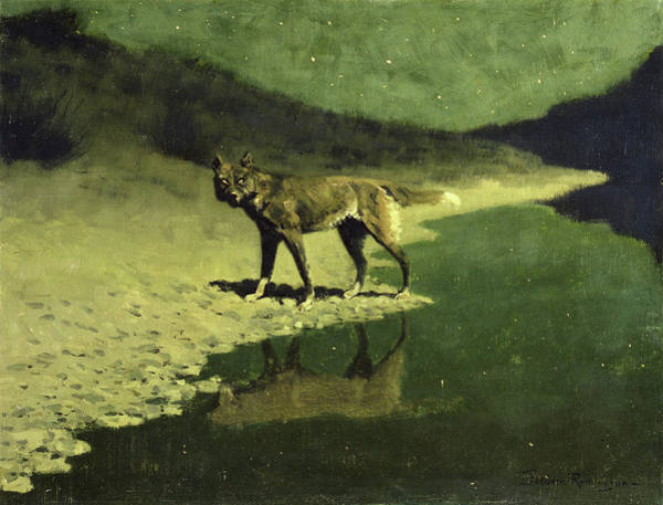 Alpha Wolf Wall Art - Painting - Moonlight, Wolf, 1909 by Frederic Remington