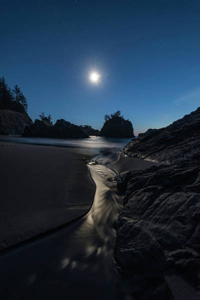 Oregon Coast Photograph - Moonlighting In Brookings Oregon by Exquisite Oregon