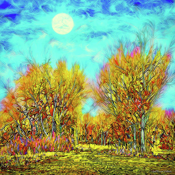 Digital Art - Moonlit Country Road - Boulder County Colorado by Joel Bruce Wallach