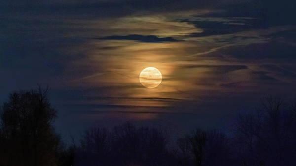 Photograph - Moonrise by Allin Sorenson
