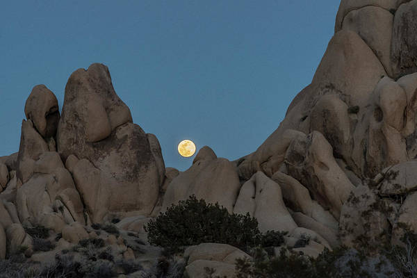 Photograph - Moonrise In The Sight by Matthew Irvin