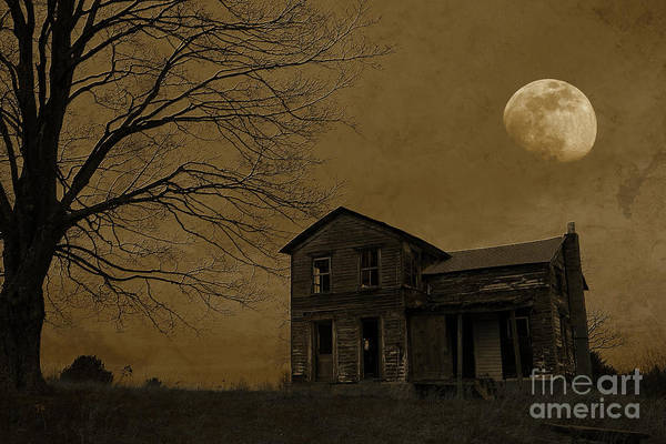 Wall Art - Photograph - Moonrise Over Abandoned Homestead With Dramatic Tree by John Stephens