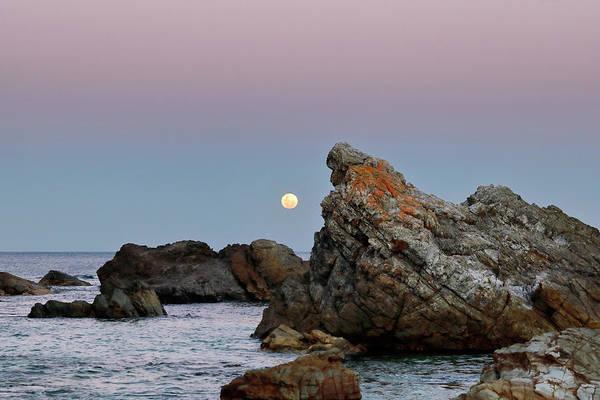 Photograph - Moonrise Over Burgess Beach by Nicholas Blackwell