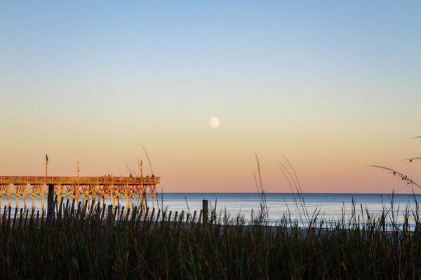 Photograph - Moonrise by Ree Reid