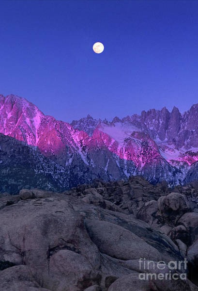 Photograph - Moonset Alpenglow Alabama Hills Eastern Sierras California by Dave Welling