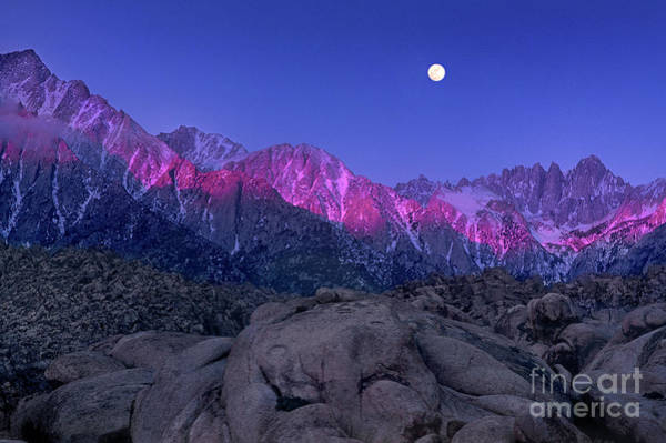 Photograph - Moonset At Dawn Eastern Sierras Alabama Hills California by Dave Welling