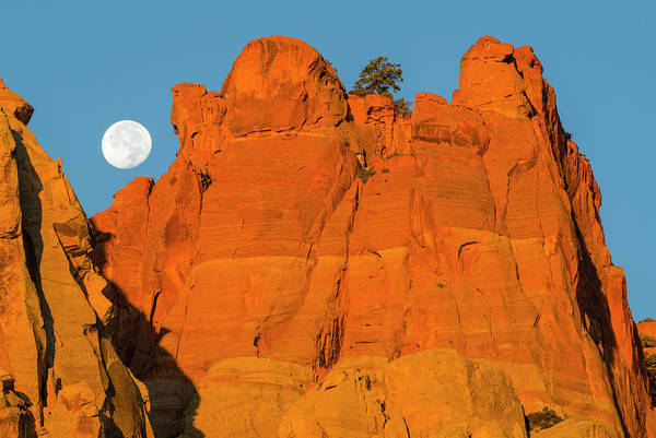 Wall Art - Photograph - Moonset At Dawn Over Sandstone Fins by Panoramic Images