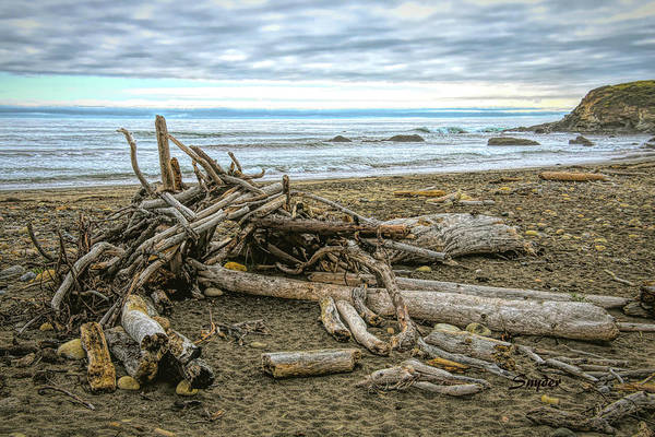 Photograph - Moonstone Beach Driftwood Beach House 2 by Floyd Snyder
