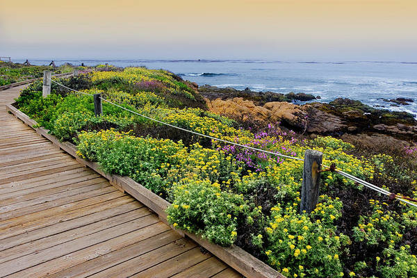 Pacific Ocean Photograph - Moonstone Boardwalk by Stephanie Sawyer