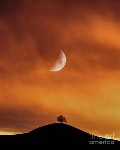 Wall Art - Photograph - Moontide by Peter Awax