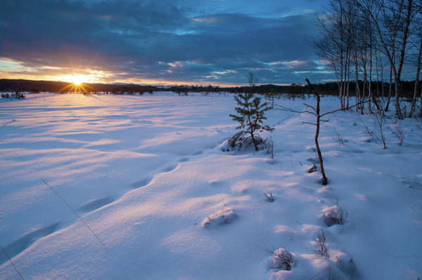 Moored Photograph - Moor Landscape In Winter by Olaf Broders