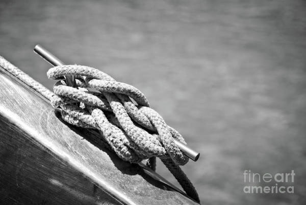 Wall Art - Photograph - Mooring Rope 3 by Delphimages Photo Creations