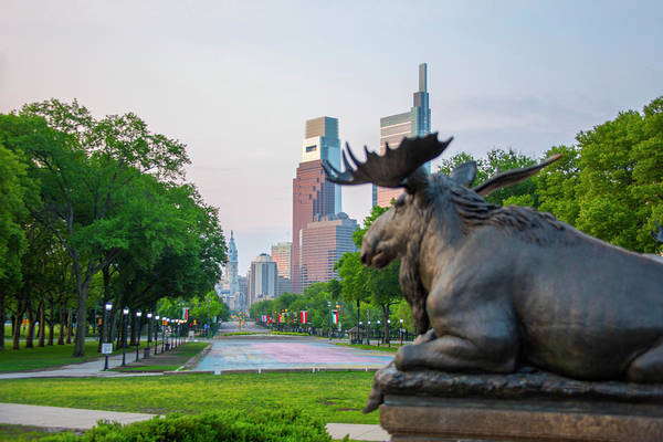 Photograph - Moose Statue On The Parkway - Philadelphia by Bill Cannon