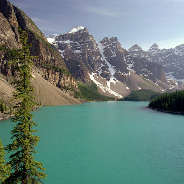 Wall Art - Photograph - Moraine Lake And Tree by Hpphoto