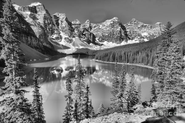 Photograph - Moraine Lake Morning Reflections Through The Trees Black And White by Adam Jewell