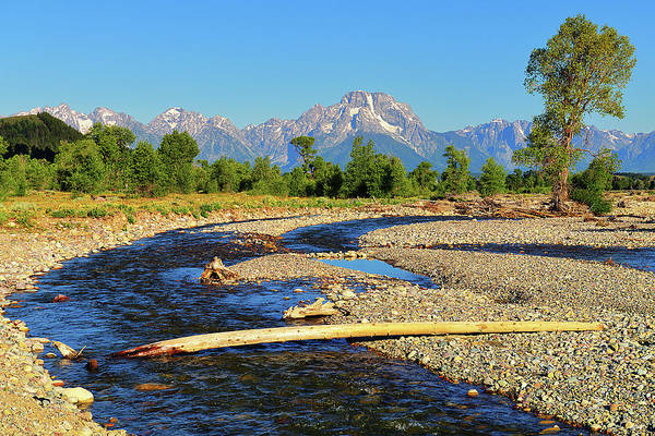 Photograph - Moran From Spread Creek by Greg Norrell