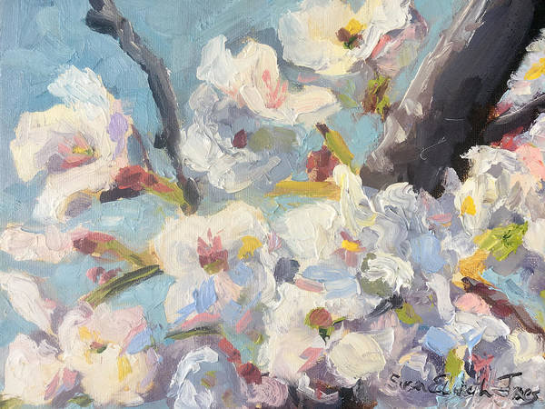 Wall Art - Painting - More Cherry Blossoms by Susan Elizabeth Jones