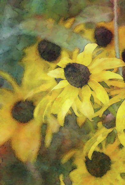 Photograph - More Yellow 7401 Idp_2 by Steven Ward