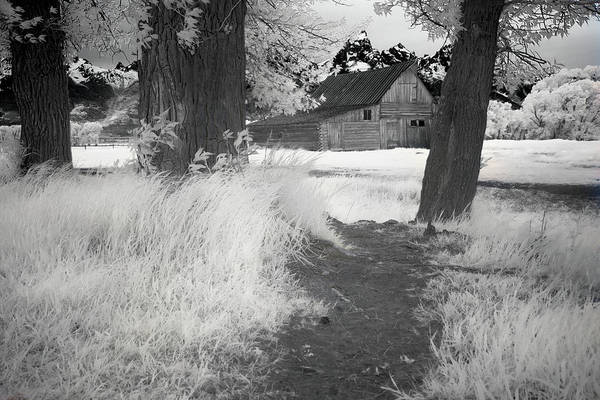 Wall Art - Photograph - Mormon Row Barn by Jon Glaser